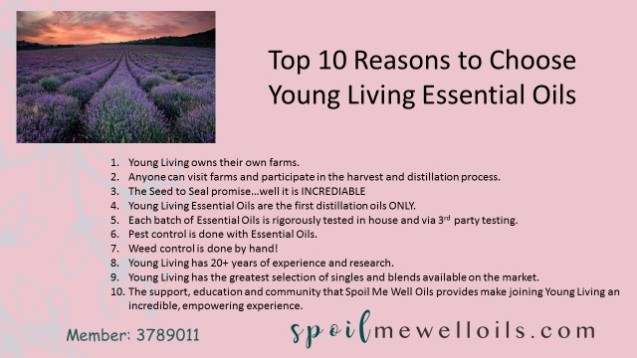 top 10 reason for YLEO