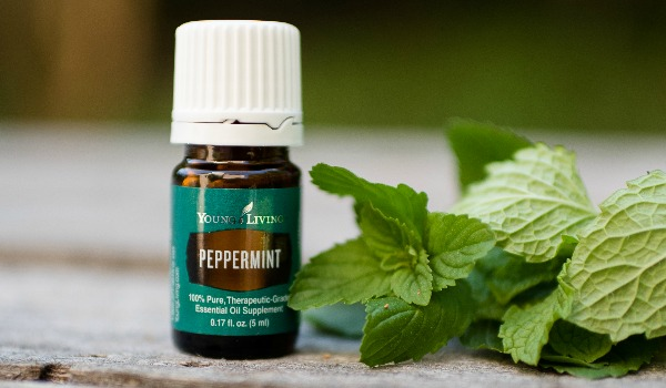 Uses of peppermint essential oil