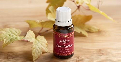 purification-essential-oil