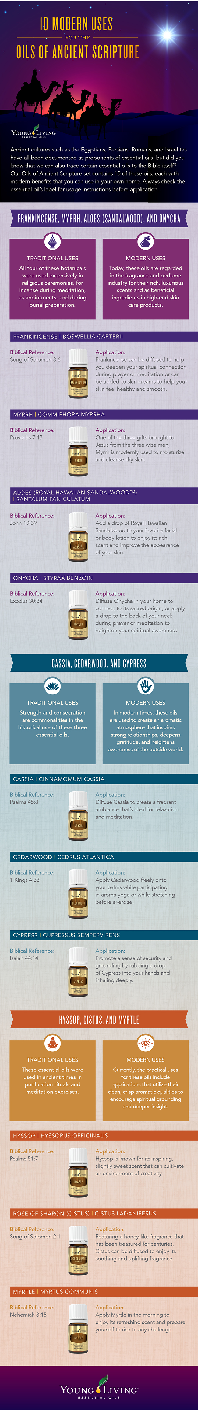 blog_BiblicalOils_infographic_US-With-the-Typo-Change
