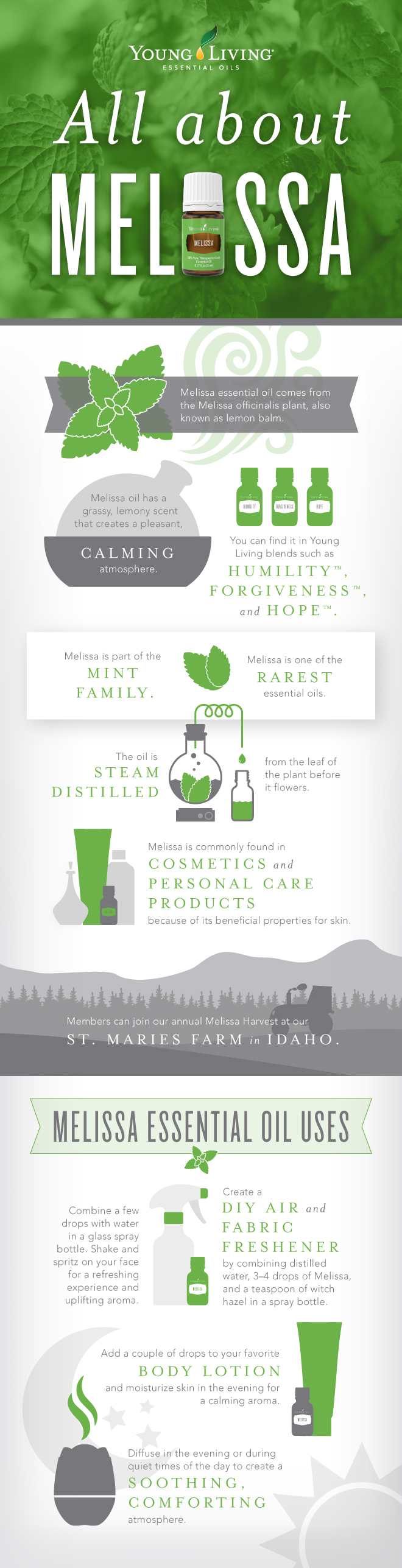 blog-All-About-Melissa-_Infographic_US_JeS_0517-1.jpg