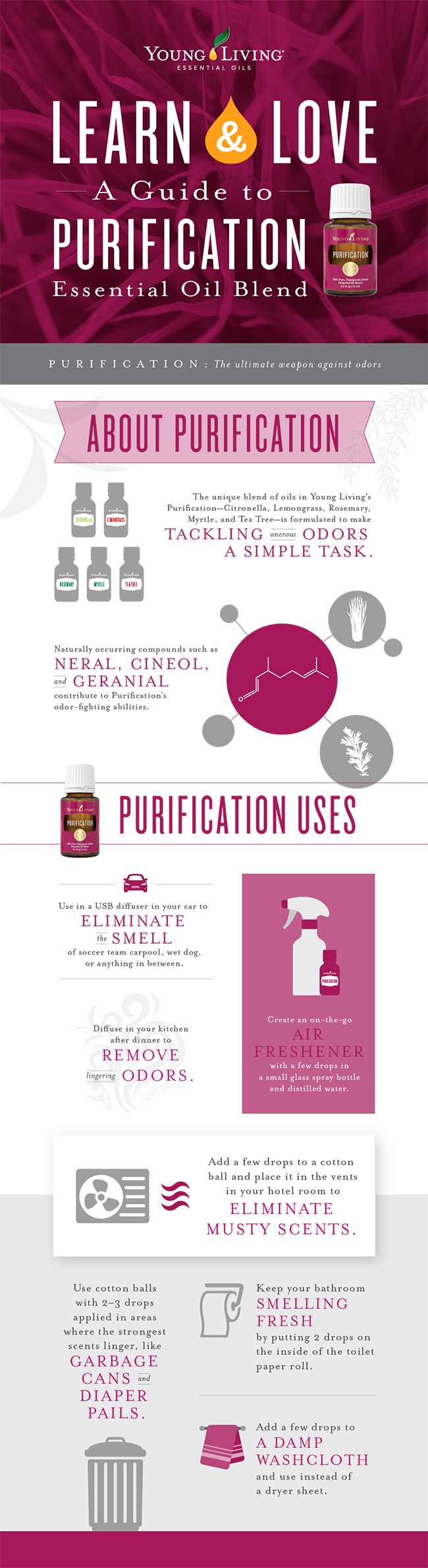 blog-Learn-Love-A-guide-to-Purification-essential-oil-blend_Infographic_US_Final.jpg