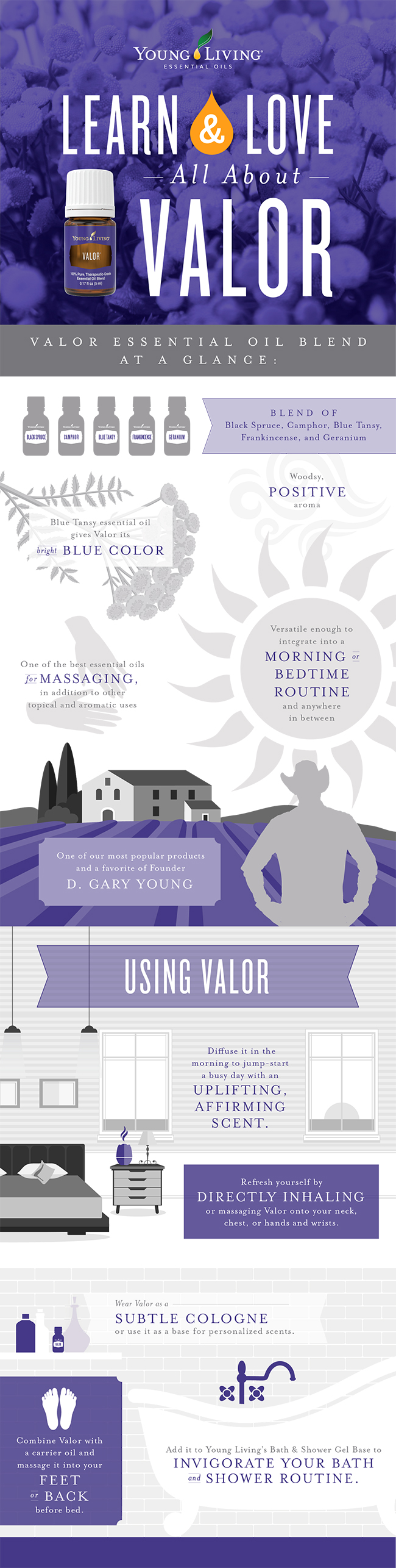 blog-Learn-Love_All-About-Valor_Infographic_US-3-002.jpg